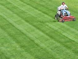 How To Start A Lawn Care Business - -- Extra Income For ...